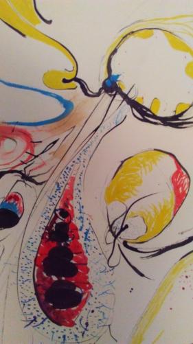 Closeups of TooMuch 010
