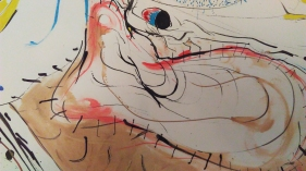 Closeups of TooMuch 012