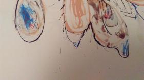 Closeups of TooMuch 017