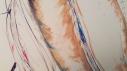 Closeups of TooMuch 049